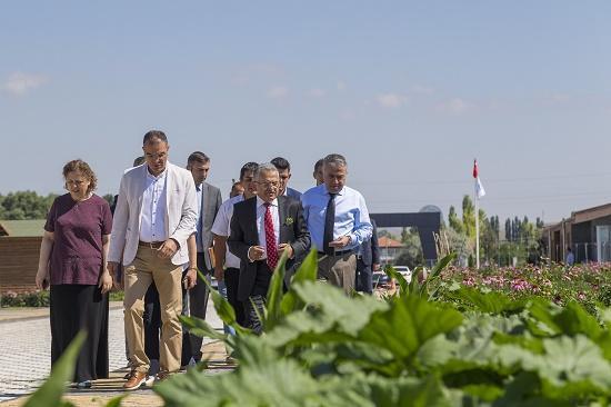 Kayseri Büyükşehir Belediyesi'nden Organik Tarıma Destek