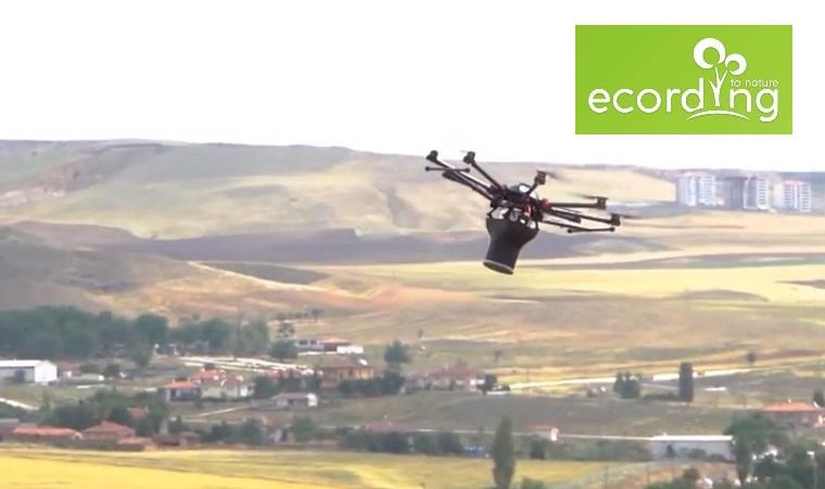 Ecording, Dronlarla Tohum Topu Atışı Yaparak İklim Değişikliği ile Mücadele Ediyor