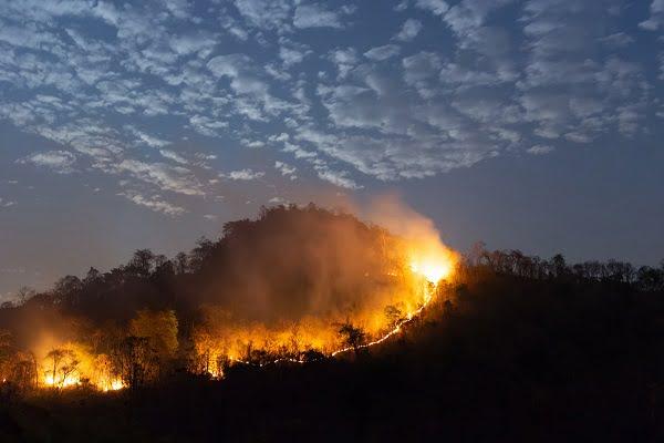 İklim Krizi, Türkiye'yi Vurdu