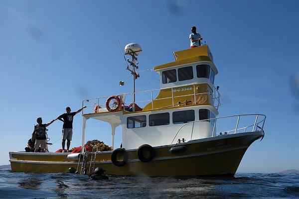 Marmara Adaları Yapay Resif Projesi ile Sucul Ekosisteme Can Suyu